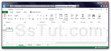 Excel web app running inside Internet Explorer
